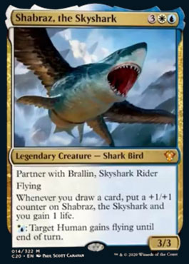 Shabraz the skyshark